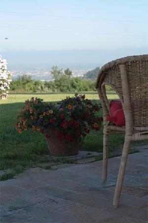 Azienda Agricola Bellavista: esterni