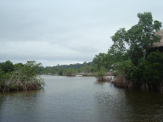 Gabon: Mangrovenlagune auf Libreville vorgelagerter Halbinsel