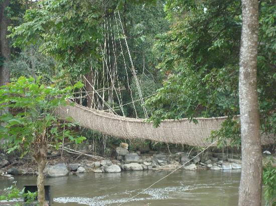 Gabão: Lianenbrücke bei Poubara