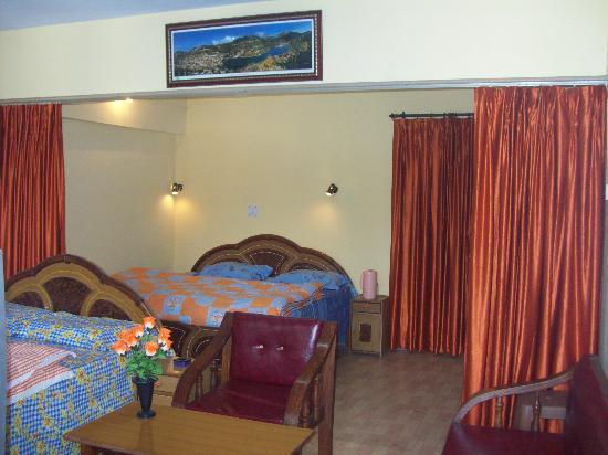 Neelkanth Guest House: Elegant rooms