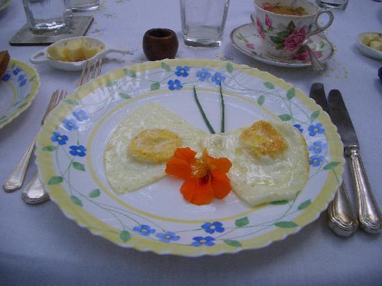 Glenburn Tea Estate: Frühstück