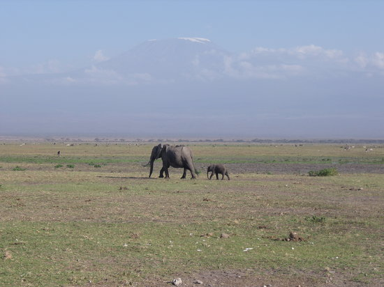 Mombasa, Kenia: Mama and baby