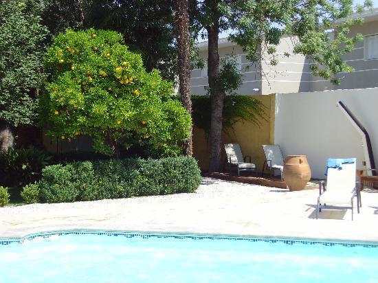 Chateau La Tour Apollinaire: Pool in the garden