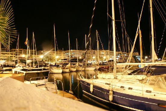 Mariano Apartamentos: Harbor