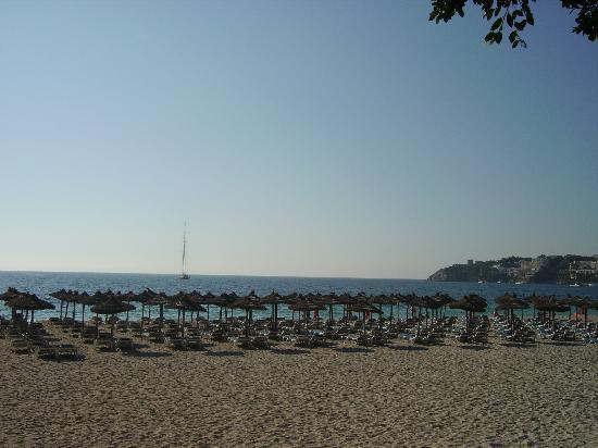Senses Palmanova: la plage