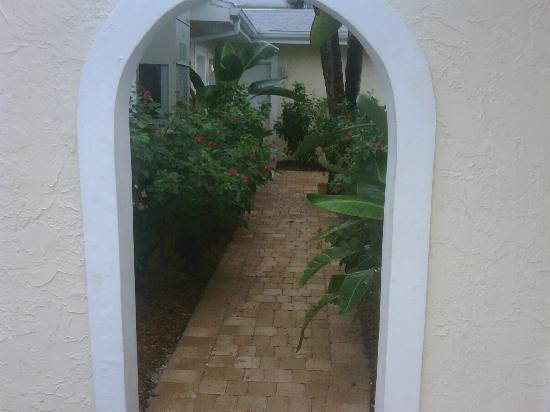 Sea Spray Resort on Siesta Key: walk way to pool and front office (love the tropical feel )