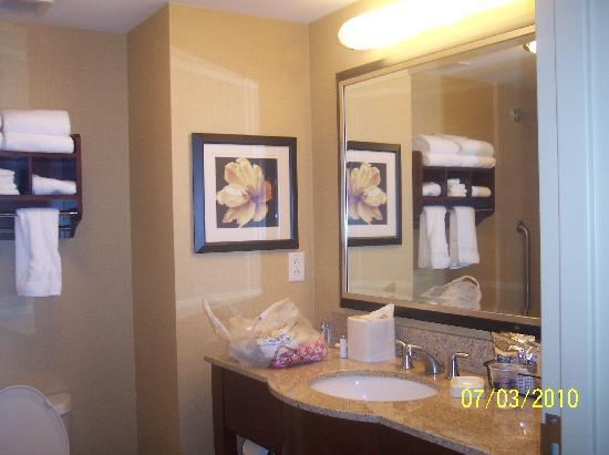 Hampton Inn & Suites Smithfield : Bathroom