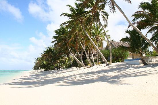 Titikaveka, Cook Islands: Absolute Beach Front
