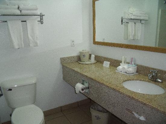 Holiday Inn Express Hotel & Suites Elkins: Bathroom