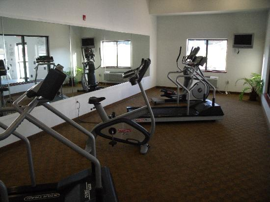 Holiday Inn Express Hotel & Suites Elkins: Exercise room