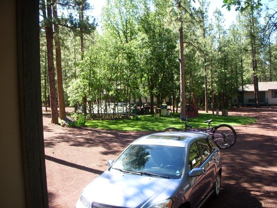 Buck Springs Resort: Nice sitting area in the pines at Buck Springs