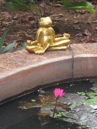 Casa Tres Amigos: meditation