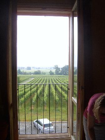 Agriturismo La Razza : View for the room