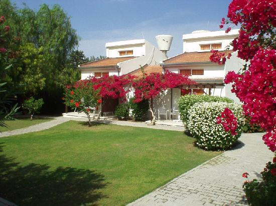 Citrus Tree Gardens : accommodation-2 rooms, sleeps 4