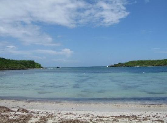 Posada Vistamar: beach