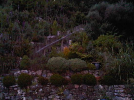 The Chapel Guest House: garden