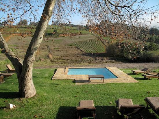 Alluvia Wine Estate: view in the morning