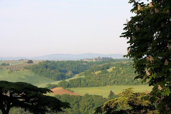 Villa dei Lecci: Beautiful Tuscany