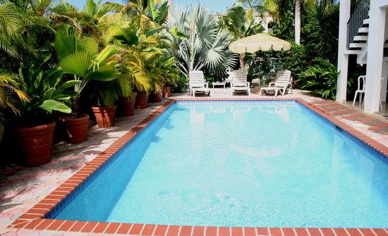 Beachside Villas Rincon: Private Pool