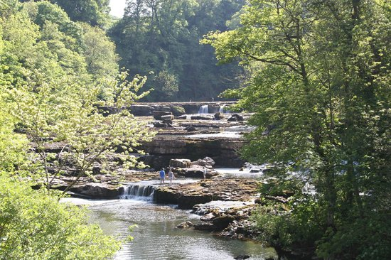 The Upper Aysgarth Falls