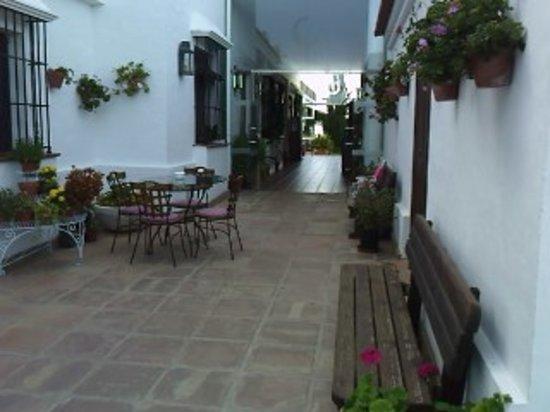 Lepe, Spain: andaluz 100%