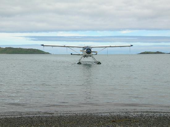 AK Adventures, Inc. - Day Tours: Plane landing to pick us up