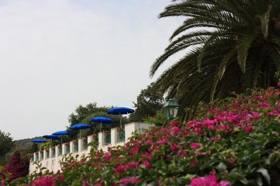 Grand Hotel San Michele: hotel pool