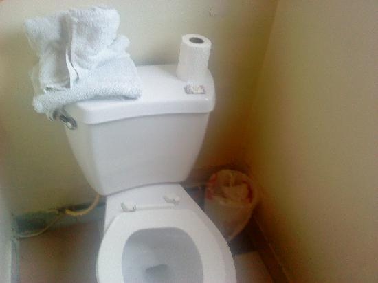 Pavilions Motel: Toilet