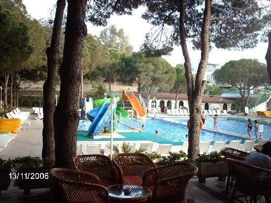 Grand Efe Hotel: Zeer mooie ligging, moe groen en dicht bij zee.Knusse zwembaden, leuke terrasje.Zeer vriendelijk