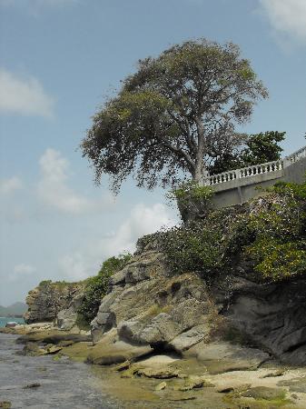 Casa de Tortuga: beautiful views