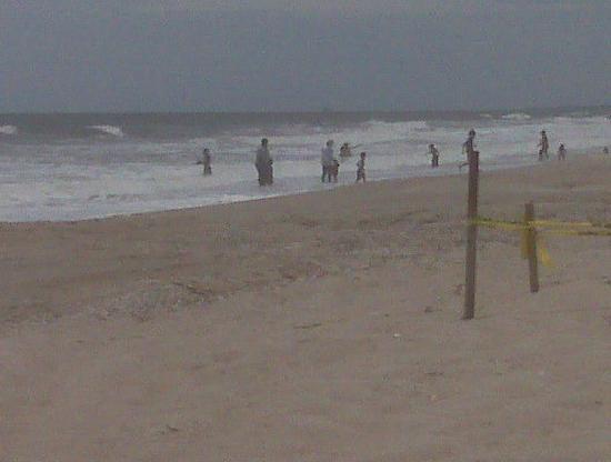 Amelia-øya, FL: beach