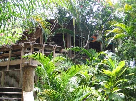 Anthony's Key Resort: Tree Top Restaurant