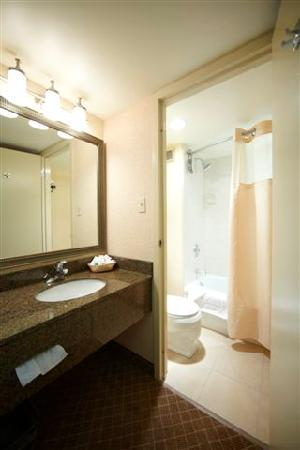 Holiday Inn Calgary - Macleod Trail South : Newly renovated guest washrooms