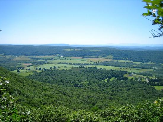 Taconic State Park Campgrounds: Brace Mountain