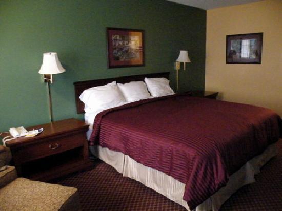 Best Western Northpark Inn: Comfortable King Room