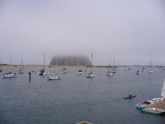 Morro bay fishing boats picture of estero inn morro bay for Morro bay fishing