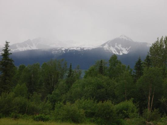 Canadian Country Cabins: View from the front of the cabin
