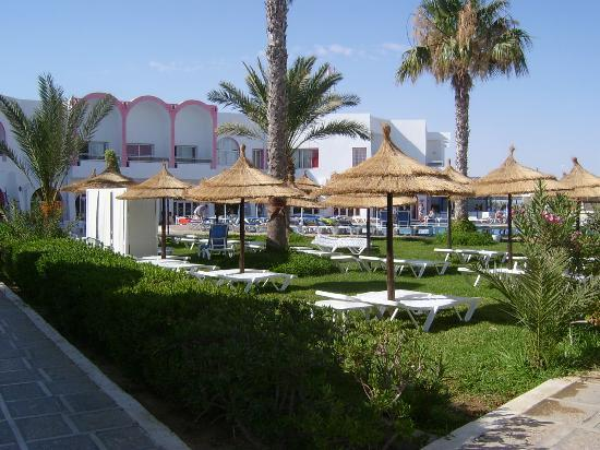 Club Jumbo Djerba: La partie jardin à côté de la piscine