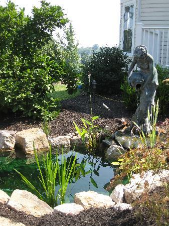 Chestnut Hill Bed & Breakfast Inn: Beautiful koi pond with fountain.