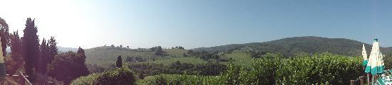 Podere Montese: Another fabulous view