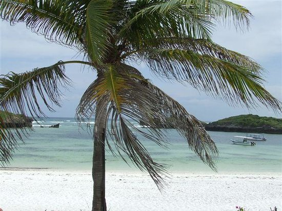 واتامو, كينيا: Watamu e le sue spiaggie