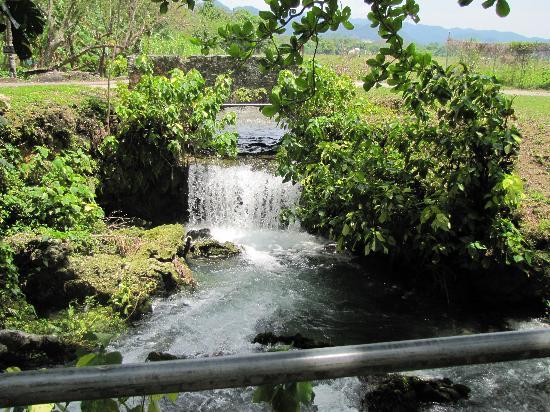 Negril, Jamajka: Roaring River