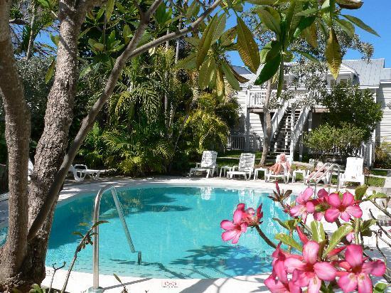 Wicker Guesthouse: Pool area