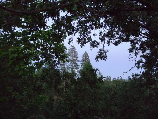 Poppy Hill Bed and Breakfast: Full moon rise from the upstairs balcony