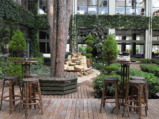 Relaxing outdoor area near reception