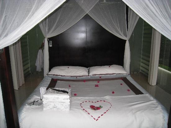 Oxygen Jungle Villas: Our rrom after the wedding
