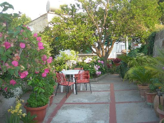 Hotel Matarese: Giardino - passaggio verso casette
