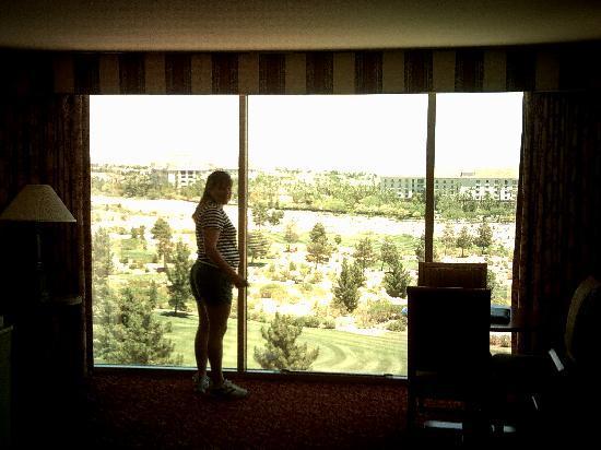Big windows picture of suncoast hotel and casino las for Picture window