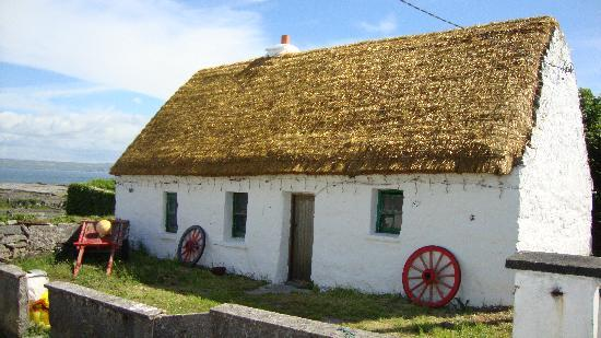 Abbeyview Bed & Breakfast: Thatched roof cottage on Inishere (Aran Islands in Galway Bay)
