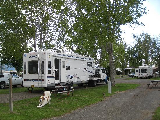 Nice trees - Mtn View RV Park, Baker City